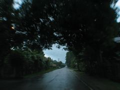 tubigon road by <b>jedsum</b> ( a Panoramio image )