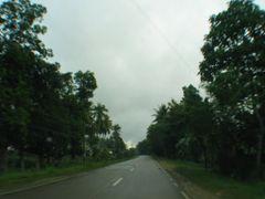 Tubigon road by <b>jedsum</b> ( a Panoramio image )