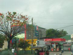 tubigon by <b>jedsum</b> ( a Panoramio image )