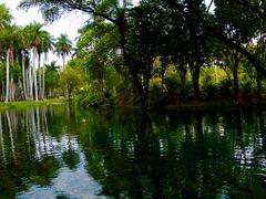 "Rio verde en ""Las Estacas"". por Eduardosco by <b>eduardosco</b> ( a Panoramio image )"