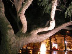 Noche en el Parque...  by <b>Isabel. E.</b> ( a Panoramio image )