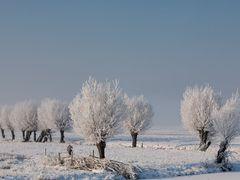 Winter landscape, Kinderdijk by <b>© BraCom (Bram)</b> ( a Panoramio image )