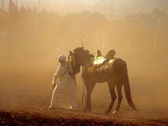 Babouche et fantasia by <b>Abdallah BOUHAMIDI</b> ( a Panoramio image )