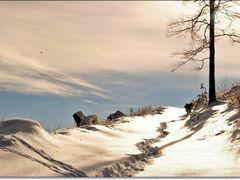 Зимен пейзаж by <b>© Manol Manoman</b> ( a Panoramio image )