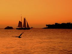 Key West sunset by <b>Agila</b> ( a Panoramio image )