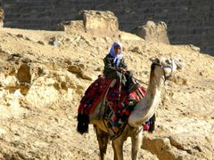 Camel Driver of Pyramid @ Giza Egypt by <b>torimiyama</b> ( a Panoramio image )