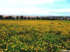 Near Casablanca, Hybrid GPS by <b>elakramine</b> ( a Panoramio image )