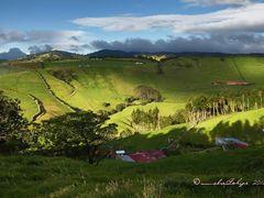 Lecherias en Palmira, Zarcero, Costa Rica by <b>Melsen Felipe</b> ( a Panoramio image )