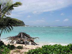 Anse la Farine - Praslin - Seychelles by <b>Michele Masnata</b> ( a Panoramio image )