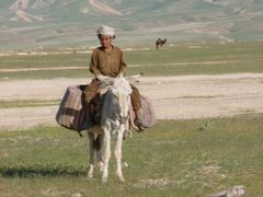 young boy on a donkey by <b>alenvu3</b> ( a Panoramio image )