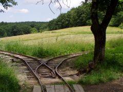 lesn eleznika v Malch Karpatoch ?! by <b>© markusino</b> ( a Panoramio image )