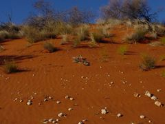 Red Centre by <b>lieskovec</b> ( a Panoramio image )