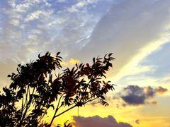 Sunset of the day often cloud by <b>yoshizuki</b> ( a Panoramio image )