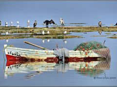 Meeresstille by <b>EA. Stoick</b> ( a Panoramio image )