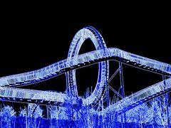Blue Turtle by <b>Henu1</b> ( a Panoramio image )