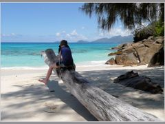 "Equitation a l""Anse Soleil, Mahe, Seychelles by <b>Armagnac</b> ( a Panoramio image )"