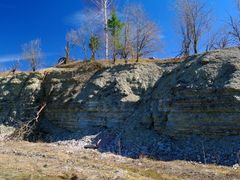 ordovician limenstone by <b>Anonimus82</b> ( a Panoramio image )