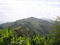 Near Thaprupara by <b>Faysal Bin Darul</b> ( a Panoramio image )