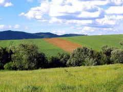 Jarne variacie... Spring variation... by <b>Majo 65</b> ( a Panoramio image )