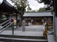 Osaka, Suita-Shi ,  Izanagijinjya  (Izanagi-shrine)   2.1640 by <b>daifuku</b> ( a Panoramio image )