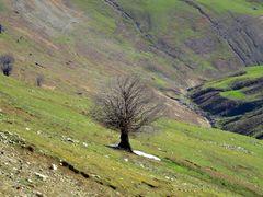 Masuleh - Khalkhal Road by <b>Alireza Javaheri</b> ( a Panoramio image )
