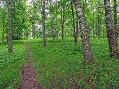 Печоры. Парк на Юрьевских горах. 22 мая 2013. by <b>АВБ</b> ( a Panoramio image )