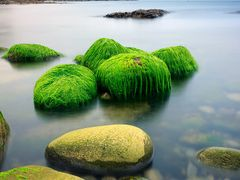 Stepping stones by <b>Pics by J</b> ( a Panoramio image )