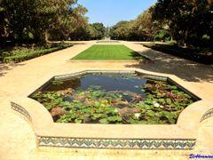 """Le Jardin d""""essais botaniques de Rabat  by <b>elakramine</b> ( a Panoramio image )"""