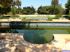 Rabat, The Experimental Botanical Garden  by <b>elakramine</b> ( a Panoramio image )