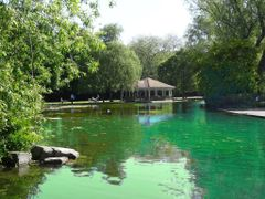 Parque Fenix - Dublin by <b>AnaMariaOss</b> ( a Panoramio image )