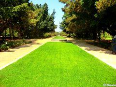"Jardin Botanique d""Essais,Rabat by <b>elakramine</b> ( a Panoramio image )"