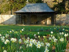 Fairlane Estate Garden by <b>Rein Nomm</b> ( a Panoramio image )