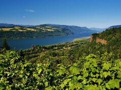 The Gorgeous Gorge ( Saturday, July 13, 2013 ) by <b>John J. Slovinec, Sr.</b> ( a Panoramio image )