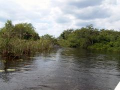 Belize - Richtung Lamanai by <b>rokaPic40666</b> ( a Panoramio image )