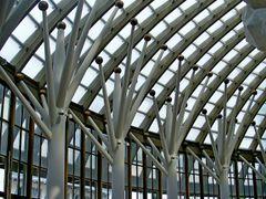 Organic architecture - Organikus epiteszet by <b>Ildiko Fehervary</b> ( a Panoramio image )