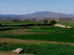Kapisa beauty  by <b>Armani Pashtun Jamaryani Kasi Damaan Kandahar</b> ( a Panoramio image )