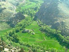 Green planet  by <b>Armani Pashtun Jamaryani Kasi Damaan Kandahar</b> ( a Panoramio image )