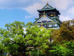 ???, Osaka Castle by <b>kazkun</b> ( a Panoramio image )