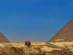 Egypt-Giza-Pyramids by <b>Nenad Obr</b> ( a Panoramio image )