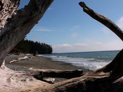 French Beach Vancouver Island by <b>der_pusher</b> ( a Panoramio image )