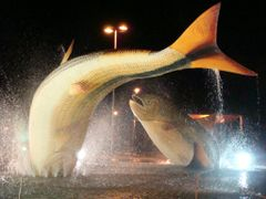 Praca principal com dois peixes Piraputangas em Bonito - Mato Gr by <b>Paulo Yuji Takarada</b> ( a Panoramio image )