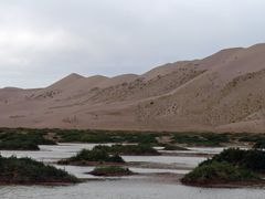 Dunes at Khongorin Els in the wet season. by <b>ce778</b> ( a Panoramio image )