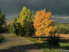 Autumn in the Czech Republic. Return autumn and landscape near t by <b>Roman Zazvorka</b> ( a Panoramio image )