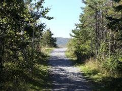 Corner Brook Three Bear Mountain Trail by <b>bryanf</b> ( a Panoramio image )