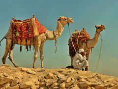 Esperando a los clientes (2) - SAQQARA - EGIPTO => 40 ?  by <b>Fernandose</b> ( a Panoramio image )