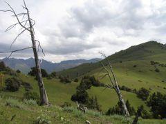 Pum, Aktash Pass (Pum-Abshir) by <b>igor_alay</b> ( a Panoramio image )