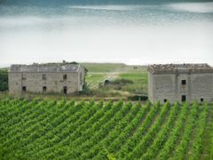Baschi - Lago di Corbara - Luglio 2013 by <b>The Red</b> ( a Panoramio image )