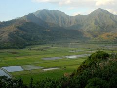 Hanalei National Wildlife Refuge - 200804 by <b>Larry Workman QIN</b> ( a Panoramio image )