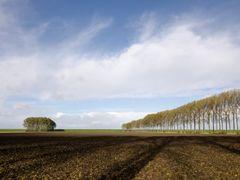 Dutch Landscape IV by <b>Neuhausler</b> ( a Panoramio image )