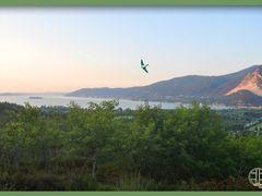 Summer swallow, Verbania, Verbano-cusio-Ossola, Italia by <b>Natmara</b> ( a Panoramio image )
